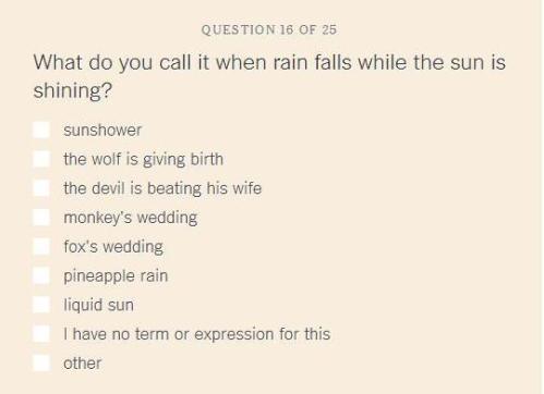 dialect_foxwedding