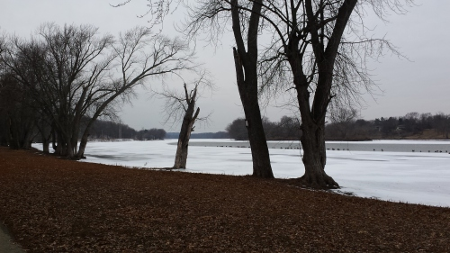 Rock River, Byron, Illinois, looking west. 31 January 2015.