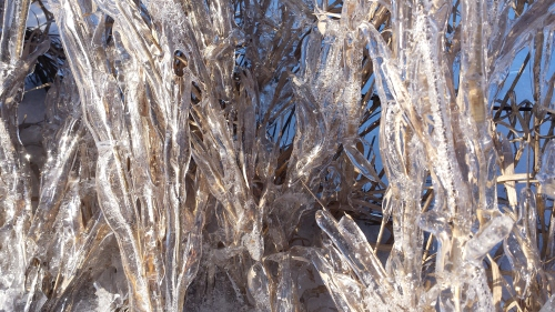 Ice, Ogle County, 5 March 2015