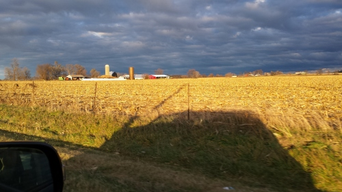 Ogle County, afternoon sun, 18 Nov. 2015
