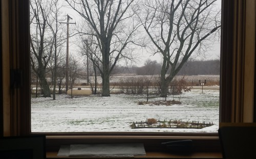 Illinois floodplain snowstorm. 9 January.