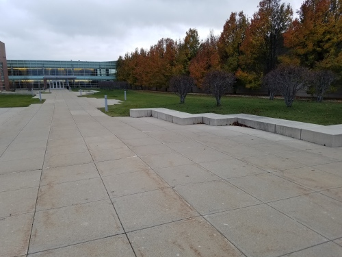 My high school and its slowly colorizing pear trees, 30 Nov.