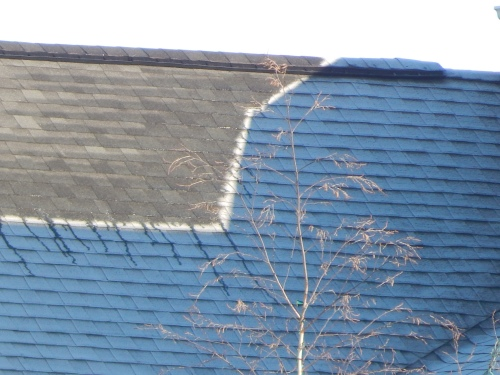 Frost on my neighbor's roof lags behind the sun's light. 1 Jan.