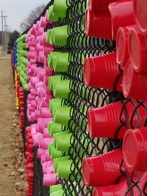 Cups in fence, profile.